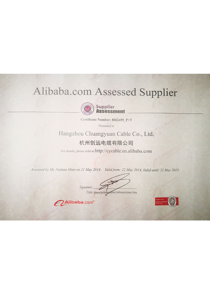 supplier assessment 1